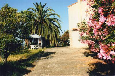 Garden Location Villa 101791 Sagone