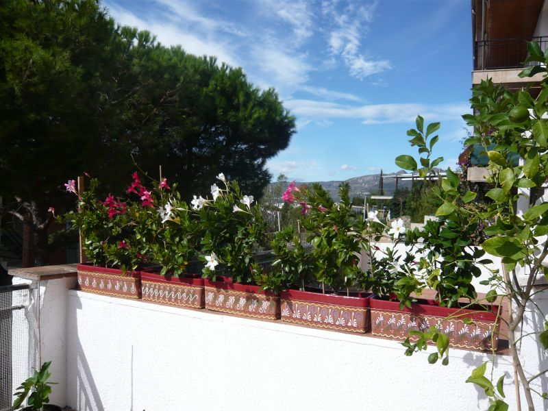 View from the terrace Location Apartment 108266 Rosas