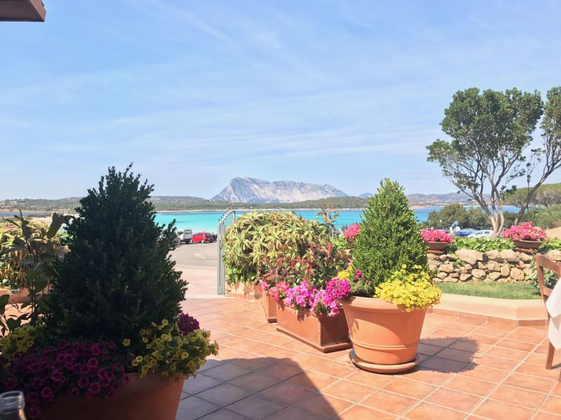 Beach Location Apartment 112833 Porto San Paolo