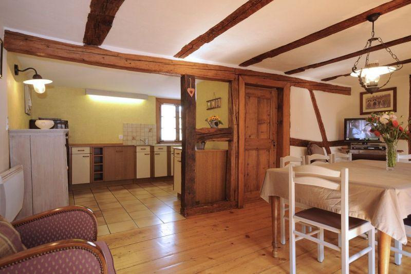 Living room Location Vacation rental 113975 Colmar