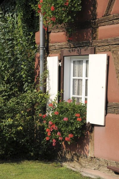 Garden Location Vacation rental 113975 Colmar