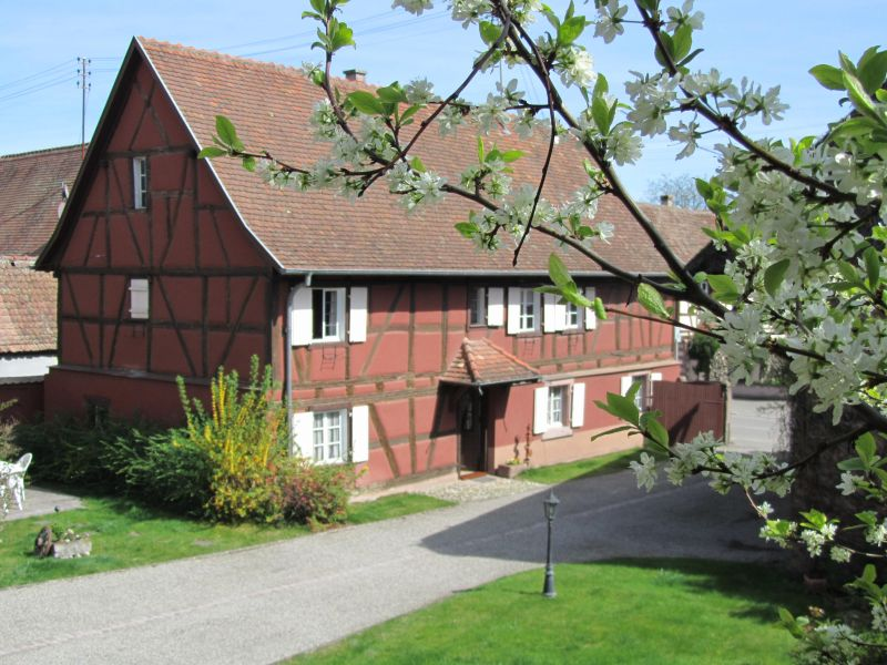 View of the property from outside Location Vacation rental 113975 Colmar
