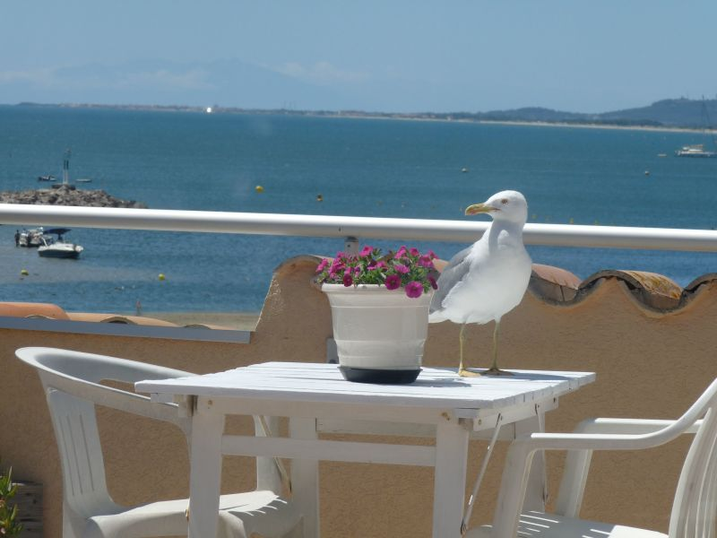 View from the terrace Location Apartment 118247 Sete