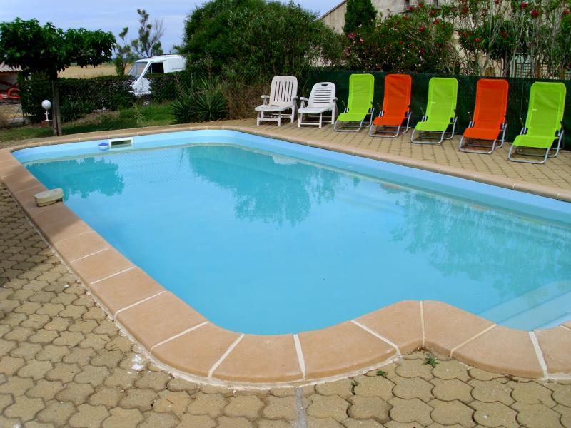 Swimming pool Location Vacation rental 71957 Arles