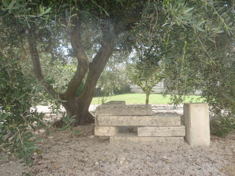 Garden Location Villa 111549 Saint Rémy de Provence