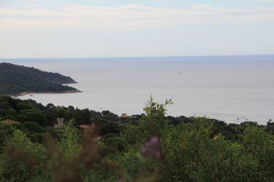 View from the terrace Location Villa 115509 Saint Tropez