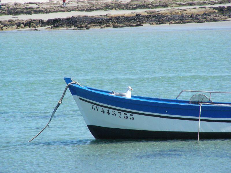 Beach Location House 106887 Île Tudy