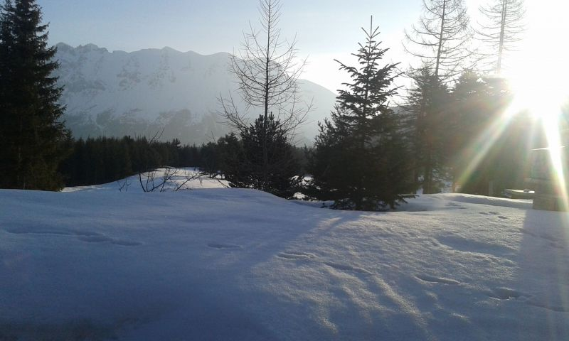 View from the balcony Location Chalet 117440 La joue du Loup