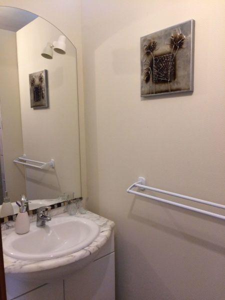 Half bath Location Vacation rental 113164 Ribeauvillé