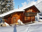 Mountain Chalet  2 to 10 people