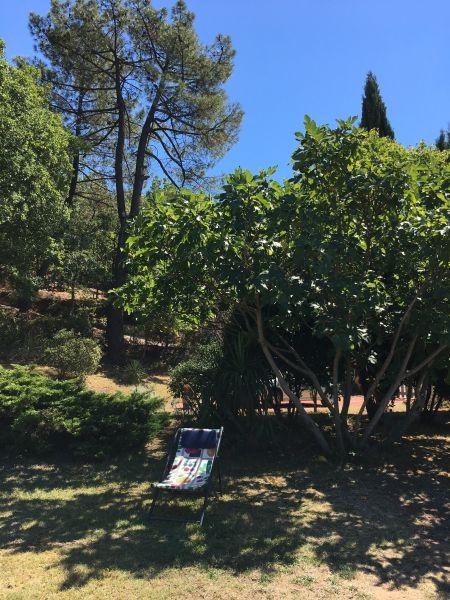 Garden Location House 100544 Roussillon