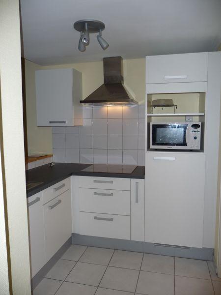 Kitchenette Location One-room apartment 108306 Thonon Les Bains