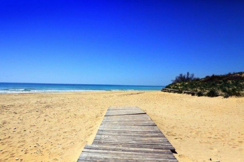 Beach Location Apartment 84982 Pescoluse