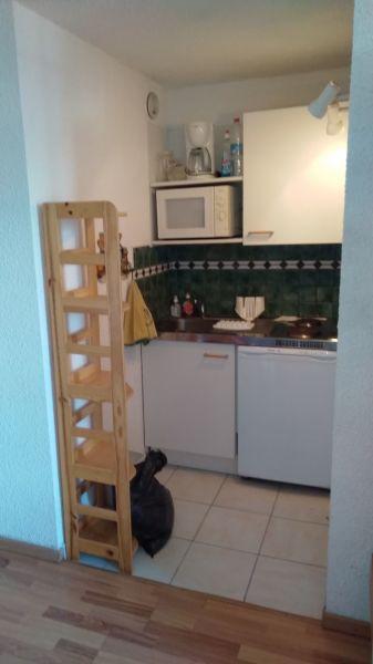 Kitchenette Location Apartment 117670 Risoul 1850