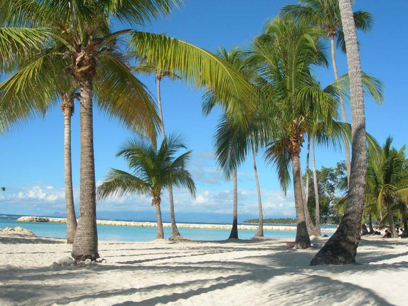 Beach Location Apartment 66397 Sainte Anne (Guadeloupe)
