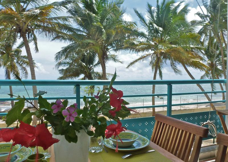 View from the terrace Location Apartment 73124 Sainte Anne (Guadeloupe)