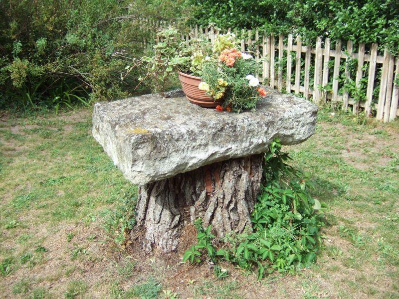 Garden Location House 84879 Saint Rémy de Provence