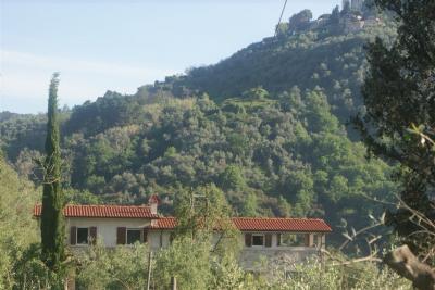 Location Vacation rental 98512 Viareggio