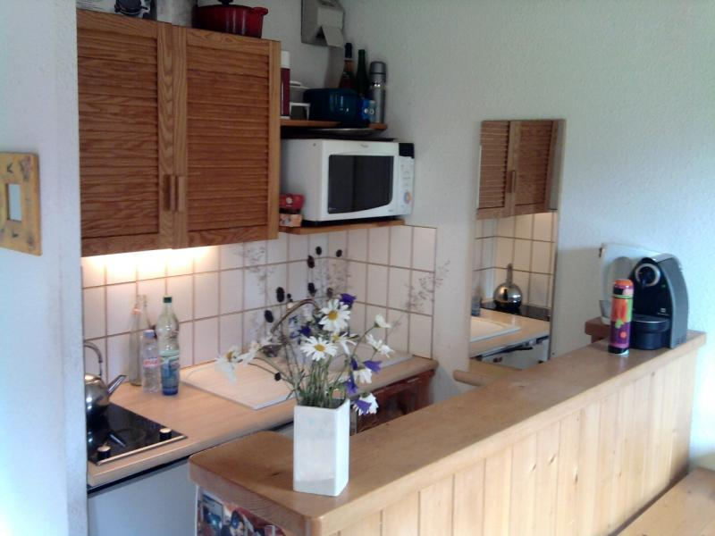 Open-plan kitchen Location Apartment 65812 Méribel
