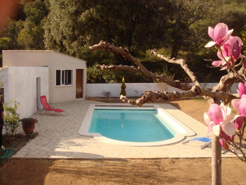 Swimming pool Location Vacation rental 69702 Uzès