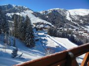 Mountain Chalet apartment Valmorel 1 to 4 people