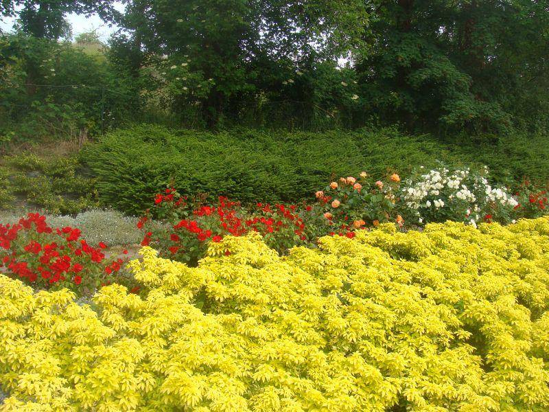 Garden Location Vacation rental 90681 Arromanches