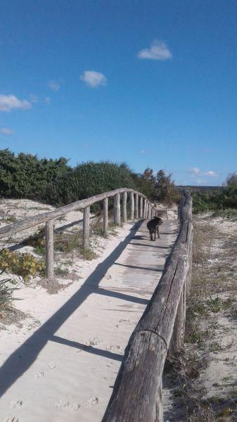 Beach Location Villa 104522 Ugento - Torre San Giovanni