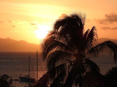 Location One-room apartment 101293 Sainte Anne (Martinique)