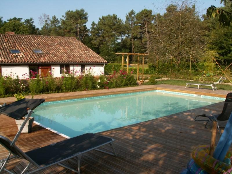 Swimming pool Location House 71055 Bordeaux