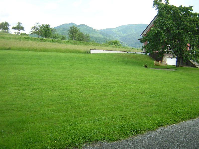 Garden Location Apartment 97553 Colmar