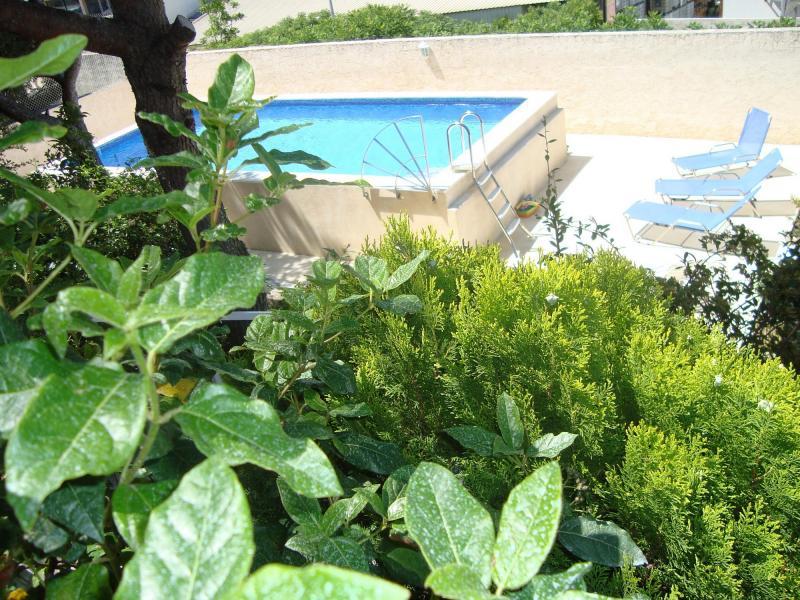Swimming pool Location Villa 82021 Cassis