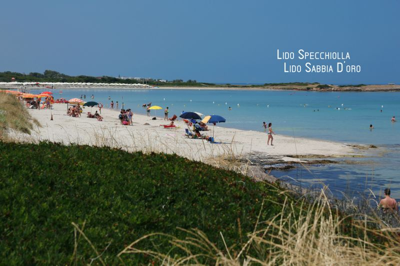 Beach Location Apartment 88176 Ostuni