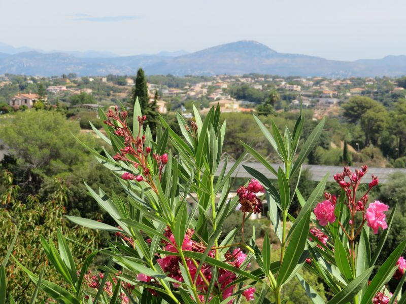 View from the property Location One-room apartment 92776 Cagnes sur Mer